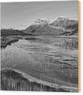 Arkle Wood Print