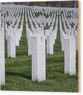 Arlington National Cemeterey Wood Print by Susan Candelario