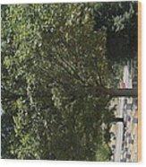 Arlington National Cemetery - 121228 Wood Print