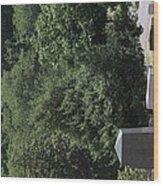 Arlington National Cemetery - 121231 Wood Print
