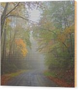Around The Bend Wood Print by Judy  Waller