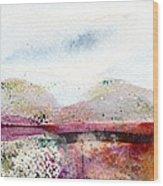 Around The Hudson Wood Print