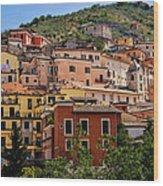Arpino City Wood Print
