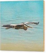 Arrival - Blue Heron - Wildlife Wood Print