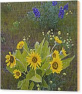 Arrowleaf Balsamroot And Lupine Wood Print