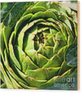 Art E. Choke - Artichokes By Diana Sainz Wood Print