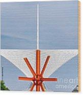 The Milwaukee Art Museum By Santiago Calatrava Wood Print