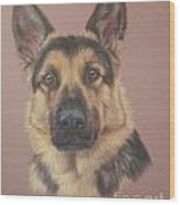 Arthur - German Shepherd Wood Print