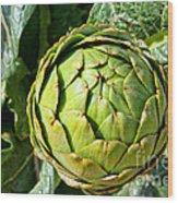 Artie Choke - Artichokes By Diana Sainz Wood Print