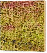 Artifact 1 Wood Print