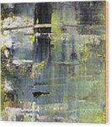 Artifact 24 Wood Print