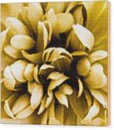Artificial Flower Wood Print