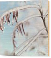 Artistic Abstract Closeup Of Frozen Tree Branches Wood Print