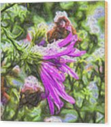 Artistic Aster In First Snow Fall 2 Imp 2-2 Wood Print