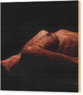 Artistic Crucifiction Wood Print by Donna Blackhall