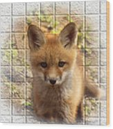 Artistic Cute Kit Fox Wood Print