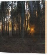 Artistic Painterly Sun Between Trees  Wood Print