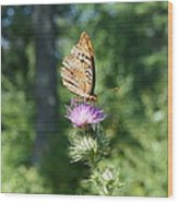 Artistic Butterfly Stand  Wood Print