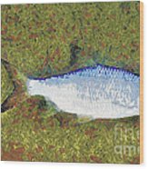 Artistically Painted Fish Wood Print