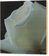 Artistry In Bloom Wood Print