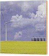Artists Choice Wind Turbine And Canola Wood Print