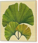 Arts And Crafts Movement Ginko Leaves Wood Print