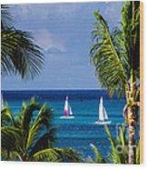 Arubian Sails Wood Print