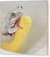 Arum Lily Frog Wood Print