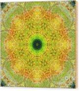 Moss Mandala Wood Print