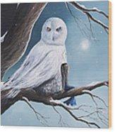 White Snow Owl Painting Wood Print