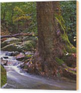 As The River Runs Wood Print