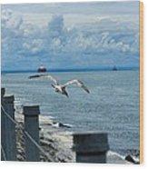 As The Seagull Flies Wood Print