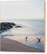 Asbury Seagulls Wood Print