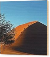 Ascent Of Dune 45 Wood Print by Liudmila Di