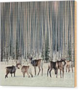 Caribou And Trees Wood Print