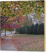 Asheville In The Fall Wood Print by Walt  Baker