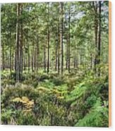 Ashley Heath Forest Wood Print