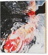 Asian Koi Fish - Black White And Red Wood Print