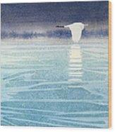Asian Swan Wood Print