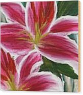 Asiatic Lily- Asiatic Lily Paintings- Pink Paintings Wood Print