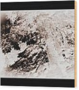 Askew Nature Picture Wood Print