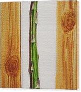 Asparagus Tasty Botanical Study Wood Print