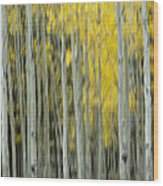 Aspen Abstract  Wood Print