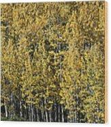 Aspen All Around Wood Print