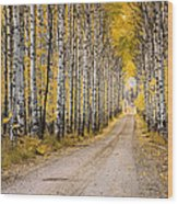 Aspen Alley Wood Print