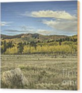 Aspen And Boulder Wood Print