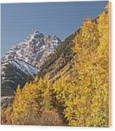 Aspen And Mountains 4 Wood Print