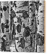 Aspen Art Wood Print