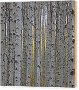 Aspen Boles #2 Wood Print