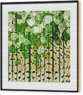 Aspen Colorado Abstract Square 2 Wood Print